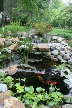 Backyard pond created by design build llc o meu cantinho no Small Water Gardens, Fish Pond Gardens, Backyard Water Feature, Ponds Backyard, Backyard Waterfalls, Garden Ponds, Outdoor Water Features, Water Features In The Garden, Garden Pond Design