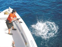 So you think you want to fish in Fiji? Fishing In Fiji, Paradise, Heaven, Heavens