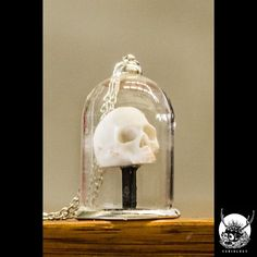 "Collier Gothique Curiology ""Skull in Bell Jar"""