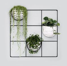 Vertical Garden with Wallment 9 Square Grid and Baskette wall baskets #Finnishdesign #nordicdesign #greenwall