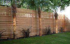 Decoracion de pequeño jardin con paredes de madera