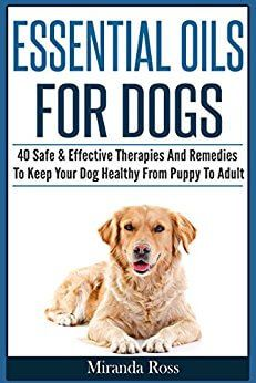 FREE ebook all about using essential oils safely with dogs-- lots more free ebooks and great deals on essential oil accessories and supplies, too!!