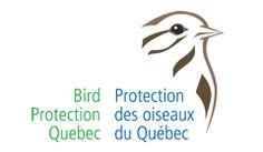 Bird Protection Quebec [Logo]