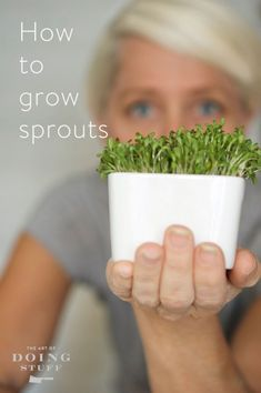 Grow Sprouts in 4 days