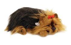Yorkshire Welpe  - Ein Hundewelpe der richtig atmet! Hund etwa 25  cm groß, verblüffend lebensecht. Der Bauch hebt und senkt sich, ja sogar leise Schlafgeräusche sind zu hören.