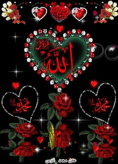 What's up with this Arabic feed? Islamic Wallpaper Hd, Name Wallpaper, Allah Wallpaper, Flower Phone Wallpaper, Beautiful Art Pictures, Image Beautiful, Beautiful Flowers Wallpapers, Beautiful Roses, Islamic Images