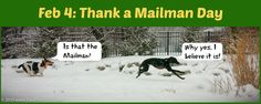 PHOTO OF THE DAY. Feb 4 (okay! I'm a day late!): Thank a Mailman Day! Only a dog--or in this case two dogs--truly knows how to thank a mailman! Hope you're enjoying our PHOTOS OF THE DAY. Please comment and REPIN! #greyhound