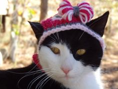 Valentines Day Cat Hat Valentine Hats for Cats by iheartneedlework