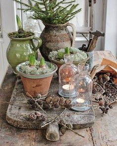 Large, Fall, Pine Cone Flowers, NINE, on heavy-duty stems. Painted Pine cones Large Fall Pine Cone Flowers NINE on heavy-duty stems. Scandinavian Christmas, Rustic Christmas, Winter Christmas, Christmas Time, Christmas Crafts, Christmas Decorations, Holiday Decor, Christmas Recipes, Christmas Feeling