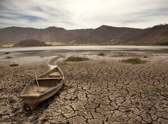 Texas A&M Expert: State's Drought Is Easing Somewhat – But For How Long?