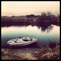 Marvelous Boat on lake shore
