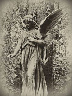 ☫ Angelic ☫ winged cemetery angels and zen statuary - angel