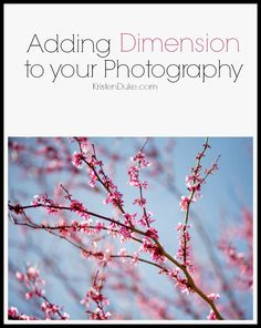 Adding Dimension to photography! Great tips and tricks for beginner photographers!