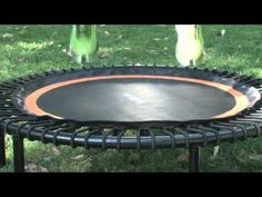 wired.com abot bellicon: Bounce Yourself Into Shape With the Bellicon Trampoline