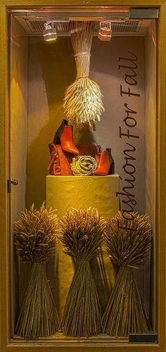 Visual Merchandising Arts fall window display