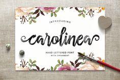 Carolinea Typeface by Seniors on Creative Market