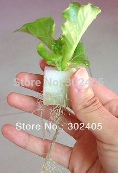 1#(117PCS-pack))Foam cubes for starting seeds  for hydroponics system,Nursery Pots. Free shipping