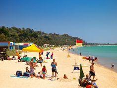 request access to the Mornington Peninsula Regional Tourism Image Library Tourism Images, Aqua Culture, Tourism Website, Snorkelling, Victoria Australia, Homeland, Melbourne, Dolores Park, Surfing