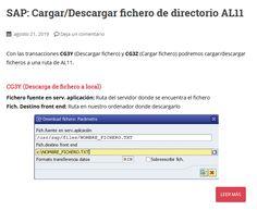 Manual SAP/ABAP para Cargar/Descargar ficheros de directorio AL11