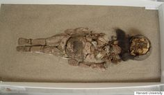 Worlds Oldest Mummies Are Turning Into Black Ooze. Is Climate Change To Blame?
