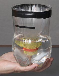 bottiglia antizanzare