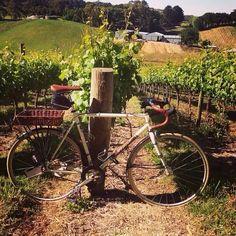 Bertrand on an adventure in an Australian vineyard