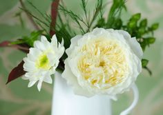 You know a rose is classically beautiful when it only needs to be paired with one daisy and a few sprigs of foliage.