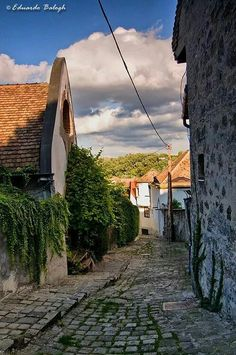 Szentendre Hungary, Budapest, Beautiful Places, Street, Building, Travelling, Boho, Beauty, Buildings