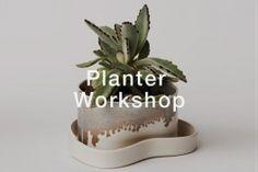 Spring Porcelain Planter Workshop - Pottery Classes New York Pottery Classes, Brooklyn, Planters, Workshop, Porcelain, Nyc, New York, Ceramics, Spring