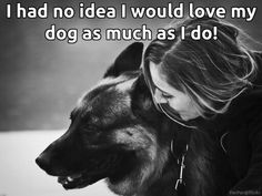 I said the same thing. The German Shepherd All Dogs, I Love Dogs, Puppy Love, Best Dogs, Black German Shepherd Dog, German Shepherd Puppies, German Shepherds, Schaefer, Dog Rules