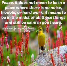 Peace quote via www.MyFaveQuotes.com