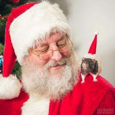 Santa Claus with Christmas Rat
