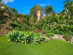 Photo of a landscaped garden design from a real Australian home - Gardens photo 304476