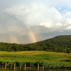 View of rainbows over the mountains at Hillsborough Vineyards.