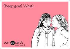 Sheep goat? What? @Rachel Beesley