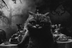 Tim Burton's Cheshire Cat in Black & White (animated gif)