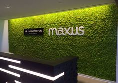 Our first living wall made out of preserved moss panels imported from Italy. Photo: GreenScaped Buildings