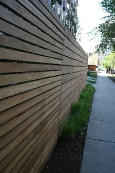 Chicago-Linear Tropical Hardwood Slat Screening and Tall Grasses