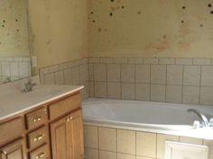 Πως να καθαρίσεις τους μύκητες και τη μούχλα από το μπάνιο