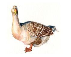 Goose Painting Original Watercolor by ecocio on Etsy