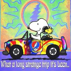 ☮ American Hippie ☮ Snoopy and Woodstock. . . Grateful Dead