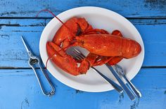 13 Zinc-Rich Foods - A little bit of zinc does your body plenty of good. These sources of the crucial mineral will help keep your immune system (and much more) in tip-top shape. Lobster Dinner, Live Lobster, How To Cook Lobster, Fast Weight Loss, How To Lose Weight Fast, Losing Weight, Zinc Rich Foods, Best Time To Eat, How To Cook Liver