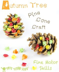 Get kids hands on with nature and developing their fine motor skills with this easy Autumn / Fall pine cone craft.