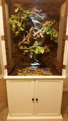 Front view of almost completed Chameleon vivarium. & Front view with doors closed of almost completed Chameleon ... Pezcame.Com