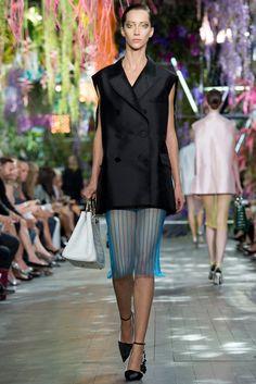 Christian Dior Spring 2014 Ready-to-Wear Fashion Show - Alana Zimmer (Elite)