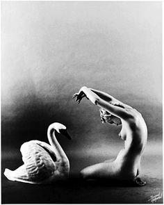 Bruno Bernard - Lili St. Cyr and Swan, circa 1949
