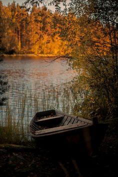 crisp-season:  Autumn Leaves~ Haunted Trees