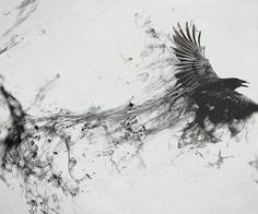 [Animals] Crow | via Tumblr