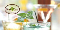 Basil Leaf Cafe - Logo Cafe Logo, Basil, Vodka, Cocktails, Chicago, Leaves, Wine, Stars, Identity