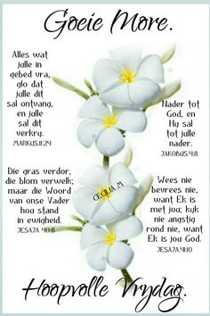 Beautiful Good Night Images, Evening Greetings, Goeie More, Afrikaans Quotes, Happy Friday, Blessings, Lilac, Cool Photos, Blessed